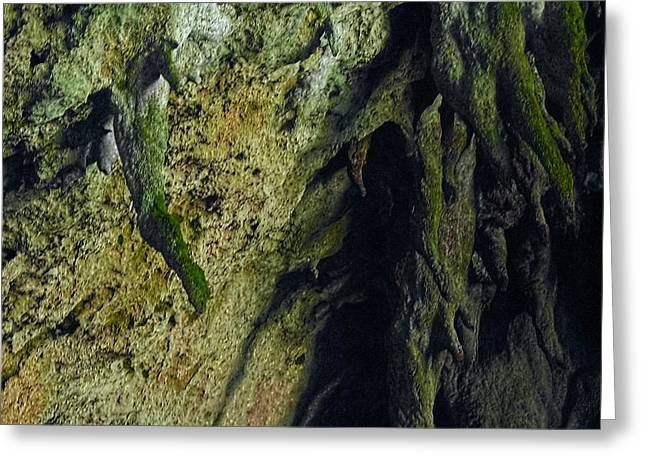Stalactite Diversity At The Camuy Cave System Greeting Card by Sandra Pena de Ortiz