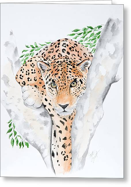 Stalker In The Trees Greeting Card by Joette Snyder