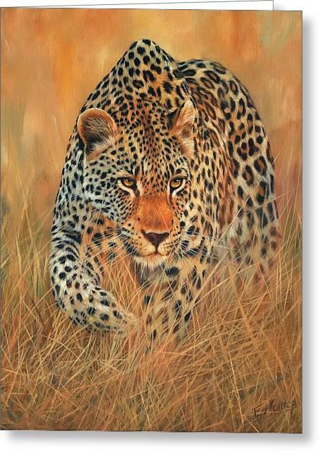 Stalking Leopard Greeting Card by David Stribbling