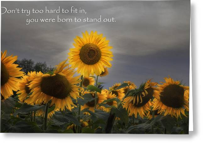 Stand Out Greeting Card by Bill Wakeley