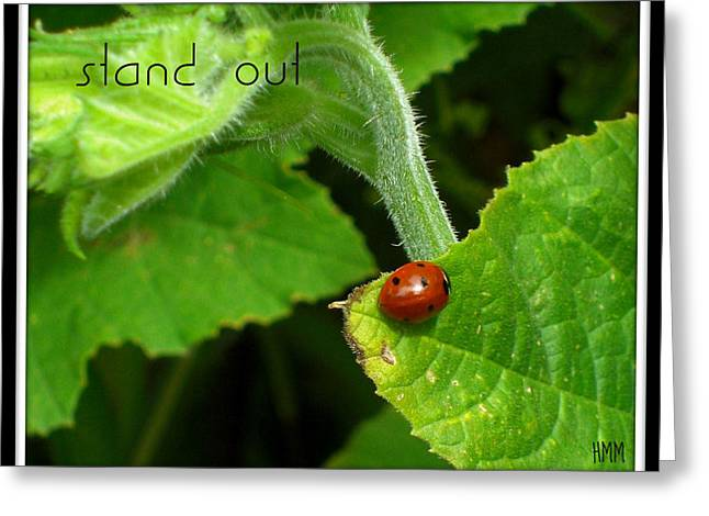Greeting Card featuring the photograph Stand Out by Heidi Manly