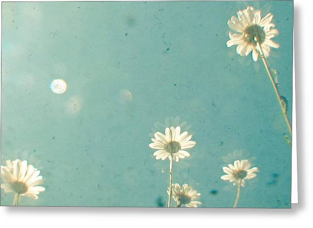 Stand Tall Greeting Card by Cassia Beck