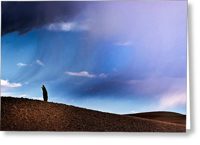 Standing Against The Wind Greeting Card
