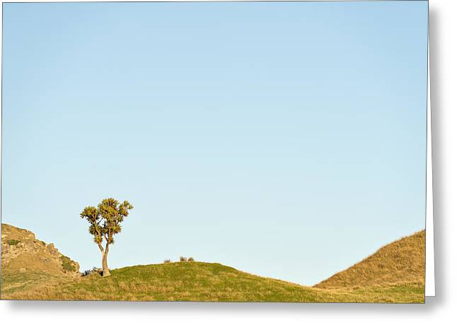 Standing Alone Greeting Card by Holger Spiering