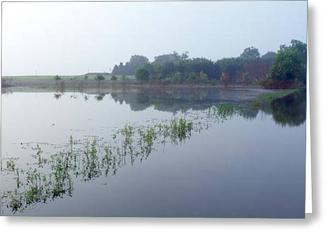 Standing Floodwater, Mississippi River Greeting Card