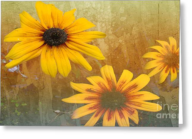 Standing Out Greeting Card by Beverly Guilliams