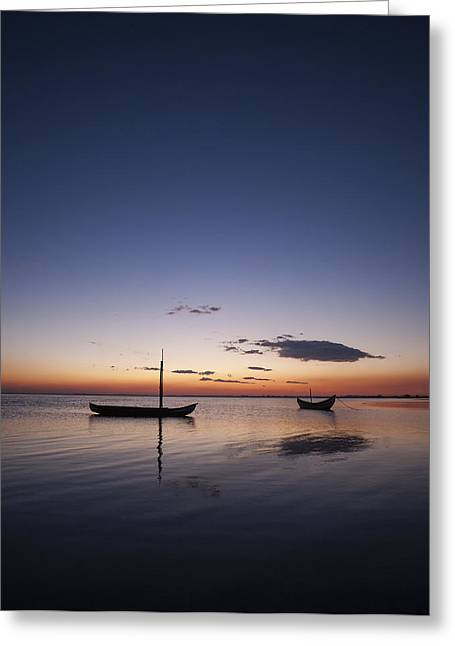 Greeting Card featuring the photograph Standing Still #2 by Antonio Jorge Nunes