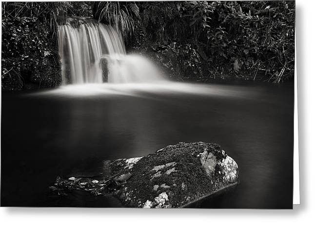 Greeting Card featuring the photograph Standing Still #3 by Antonio Jorge Nunes