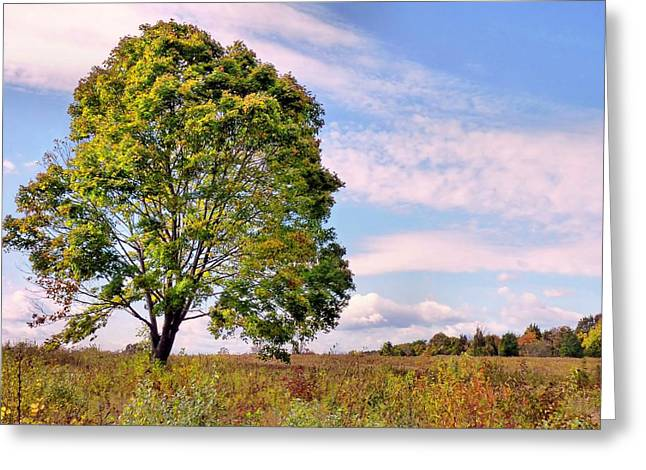Greeting Card featuring the photograph Standing Tall by Janice Drew