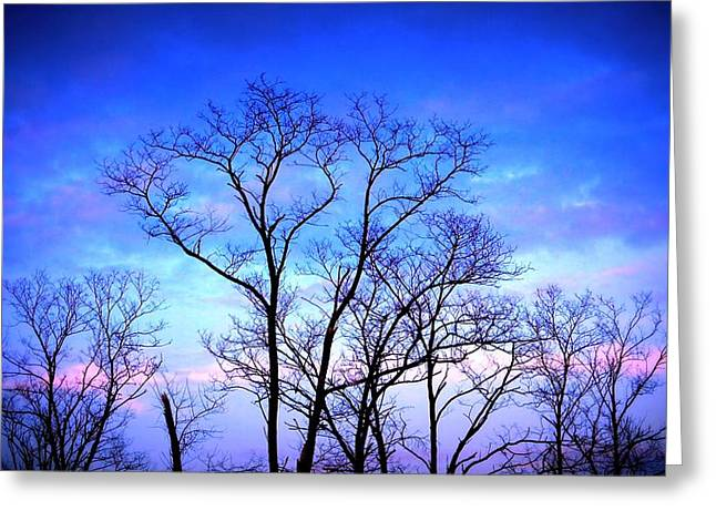 Standing Tall Greeting Card by Jose Lopez