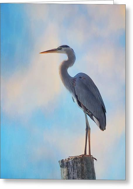 Standing Tall Greeting Card by Kim Hojnacki