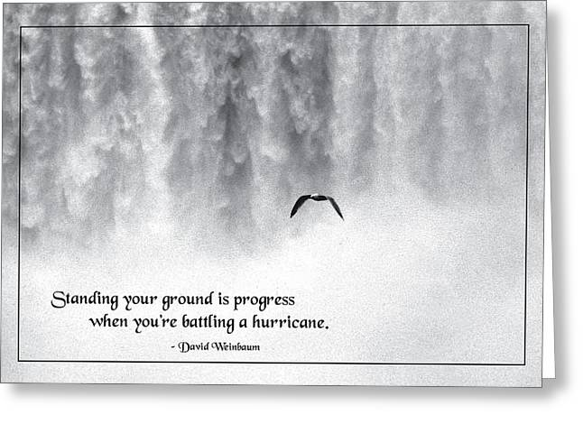 Standing Your Ground Greeting Card
