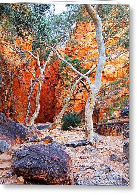 Stanley Chasm Greeting Card