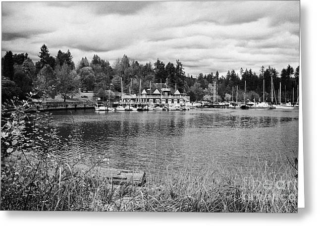 stanley park coal harbour and Vancouver rowing club marina BC Canada Greeting Card by Joe Fox