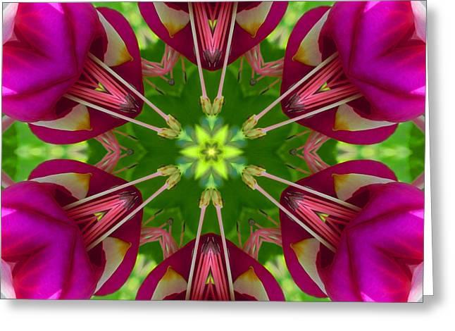 Star Fuchsia 1 Mandala Greeting Card
