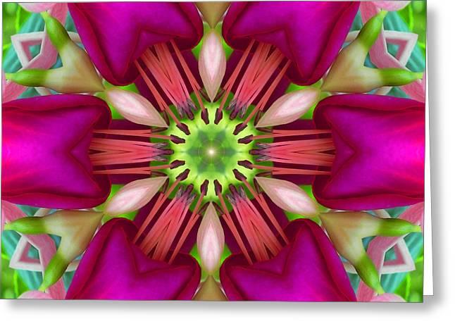 Star Fuchsia 3 Mandala Greeting Card