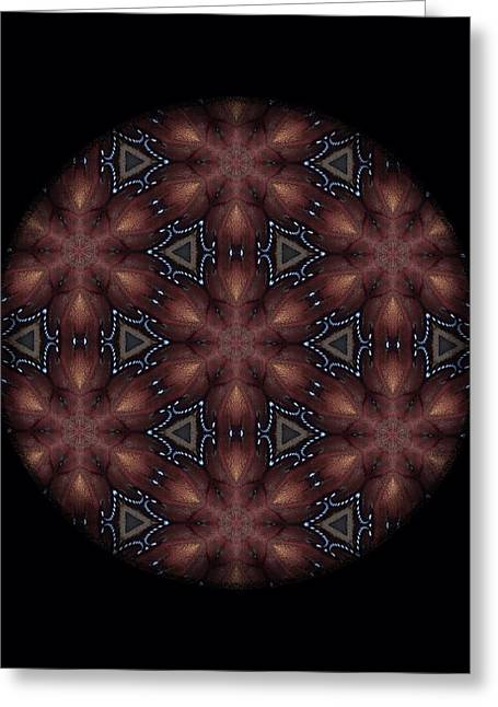 Star Octopus Mandala Greeting Card by Karen Buford