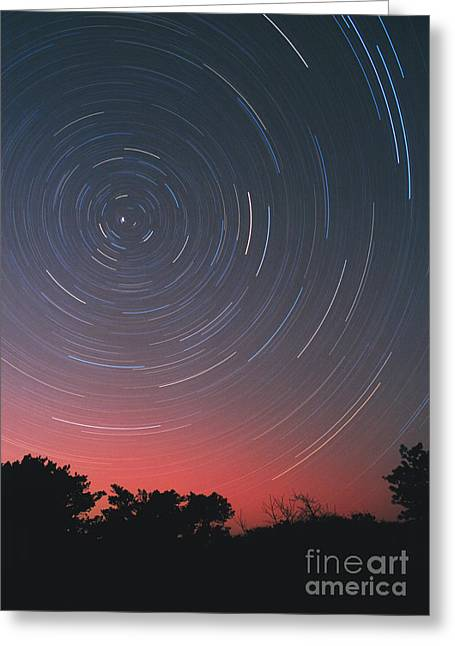 Star Trails And Aurora Greeting Card by Chris Cook