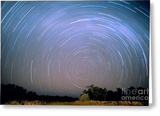 Star Trails Greeting Card by Gregory G. Dimijian, M.D.