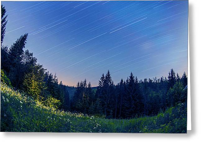 Star Trails Greeting Card by Jaroslaw Grudzinski