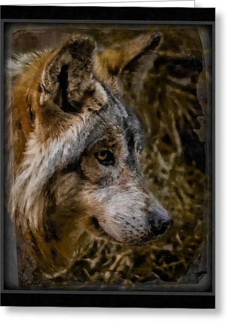 Stare Of The Wolf Greeting Card by Ernie Echols
