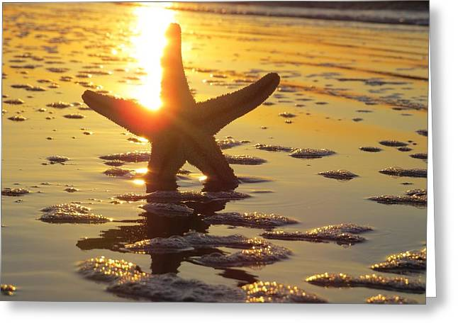 Starfish And Bubbles Greeting Card