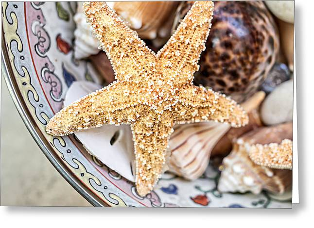Starfish And Seashells Greeting Card by Edward Fielding