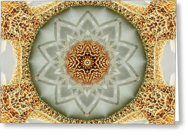Starfish Crystal Mandala Greeting Card