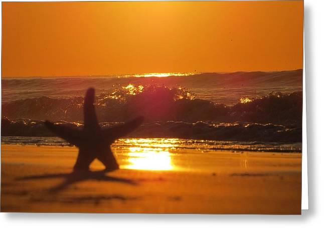 Starfish Sunrise Greeting Card by Nikki McInnes