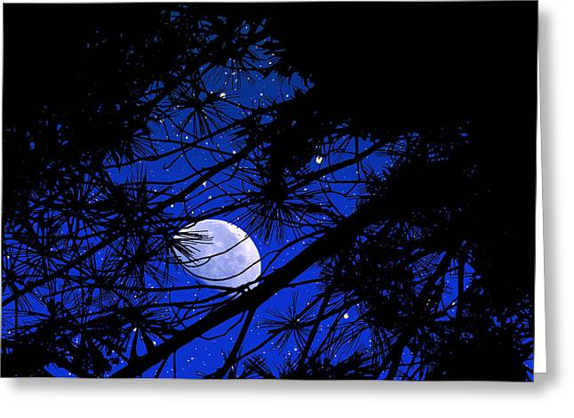 Greeting Card featuring the photograph Starry Starry Night by Mike Flynn