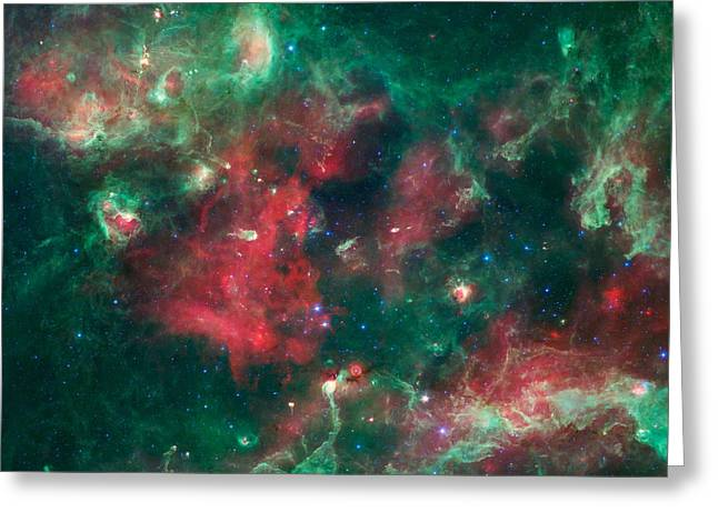 Stars Brewing In Cygnus X Greeting Card by Jennifer Rondinelli Reilly - Fine Art Photography