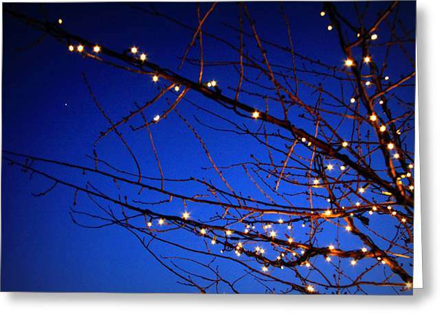 Greeting Card featuring the photograph Stars On Branches by Aurelio Zucco