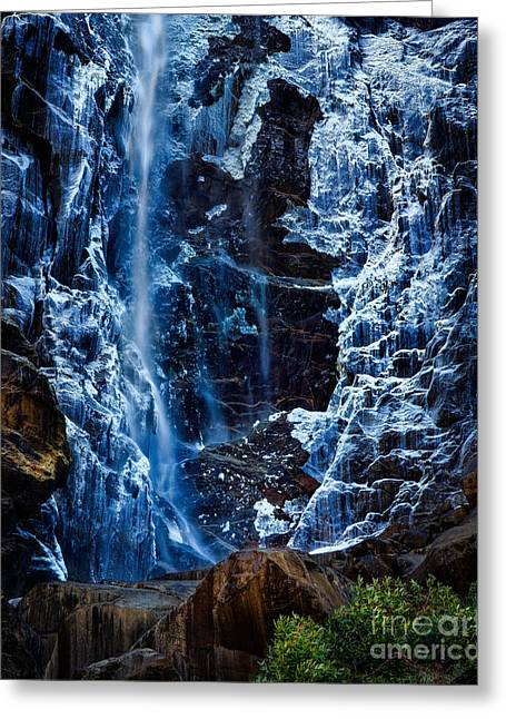 Start Of Spring Bridalvail Fall Greeting Card