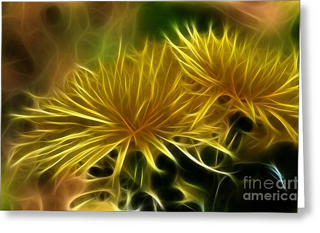 Startled Spider Mums Greeting Card by Kaye Menner