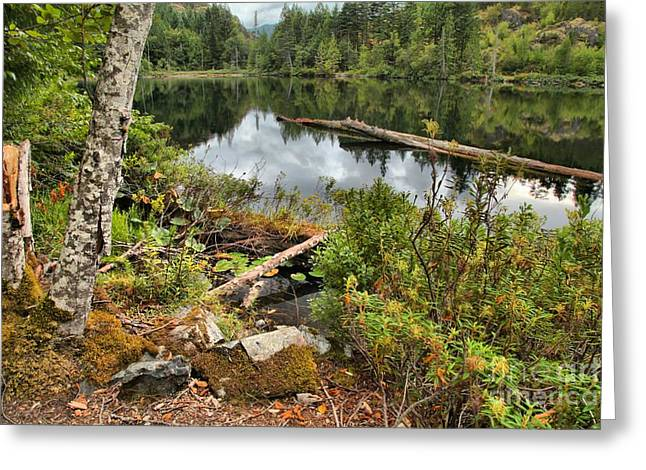 Starvation Lake Reflections Greeting Card