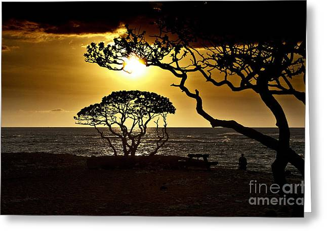 State Park Sunset Greeting Card by Karl Voss