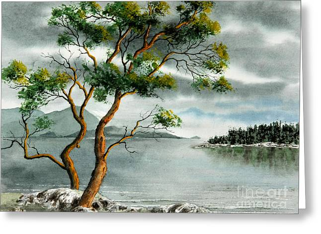 Stately Arbutus Greeting Card by Frank Townsley
