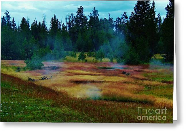 Steam Marsh Greeting Card by Larry Campbell