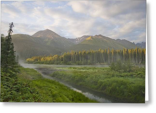 Steam Rising From Moores Hot Springs Greeting Card