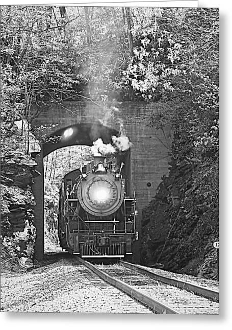 Steam Train Tunnel Greeting Card by Tammy Schneider