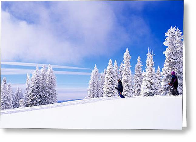 Steamboat Springs, Colorado, Usa Greeting Card by Panoramic Images