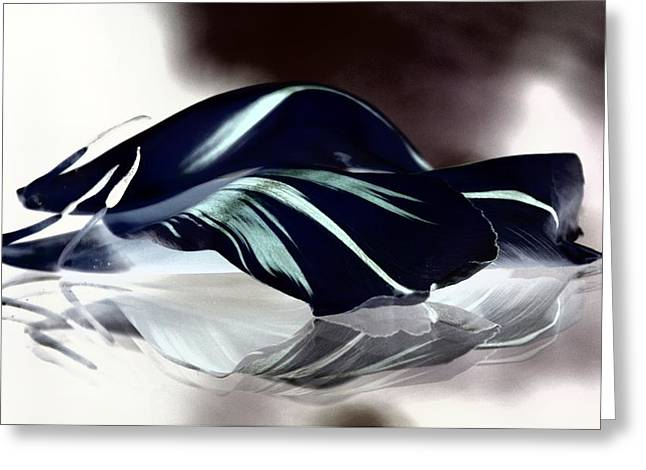 Steel Black And Blue Petals Greeting Card by  Andrea Lazar
