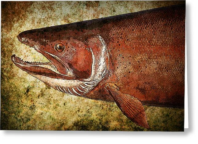 Steelhead Trout Greeting Card by Randall Nyhof