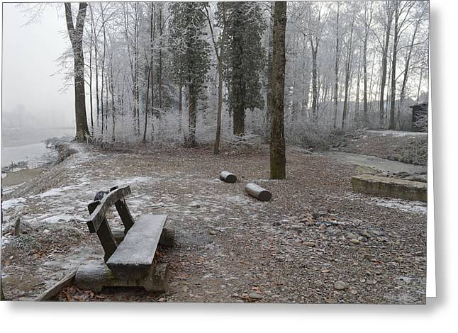 Greeting Card featuring the photograph Steep And Frost - 3 by Felicia Tica