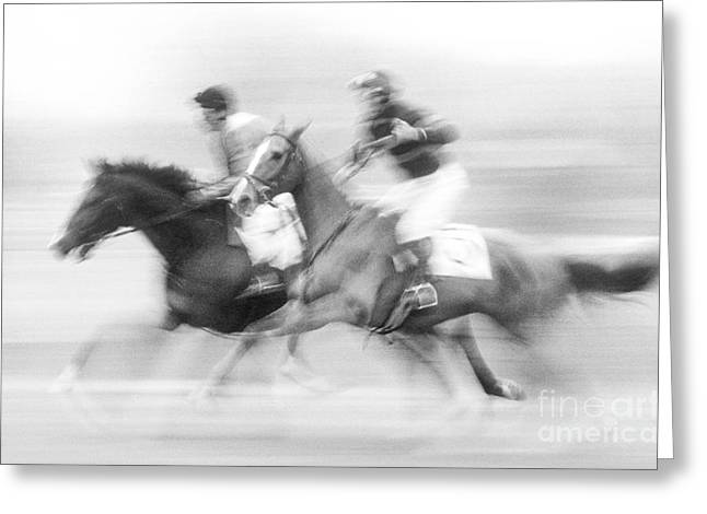 Steeplechase #2 - Fs000283 Greeting Card by Daniel Dempster