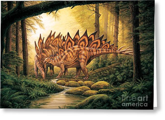 Stegosaurus Pair In Forest Greeting Card by Phil Wilson