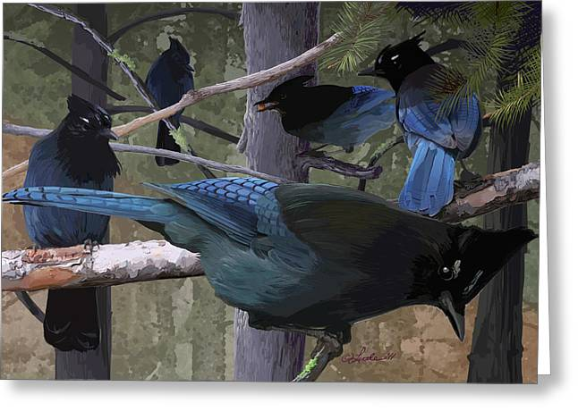 Steller's Jays Greeting Card