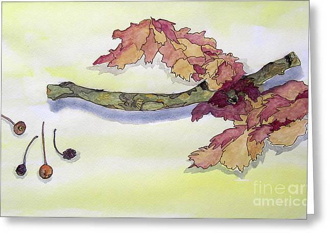 Stems And Shadows Greeting Card