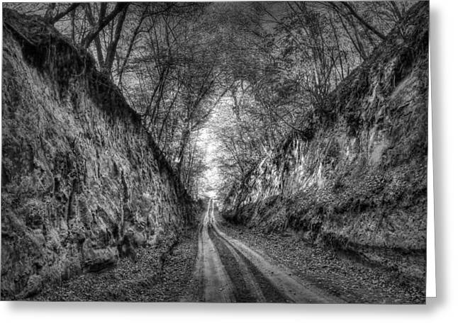 Stenophobia - Black And White Greeting Card by Nikolyn McDonald