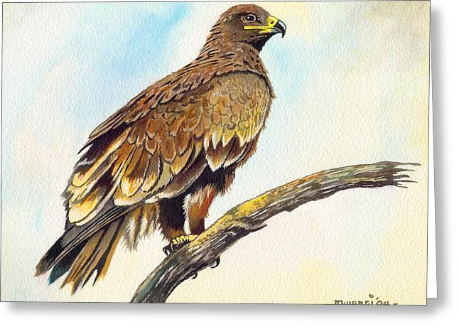 Steppe Eagle Greeting Card